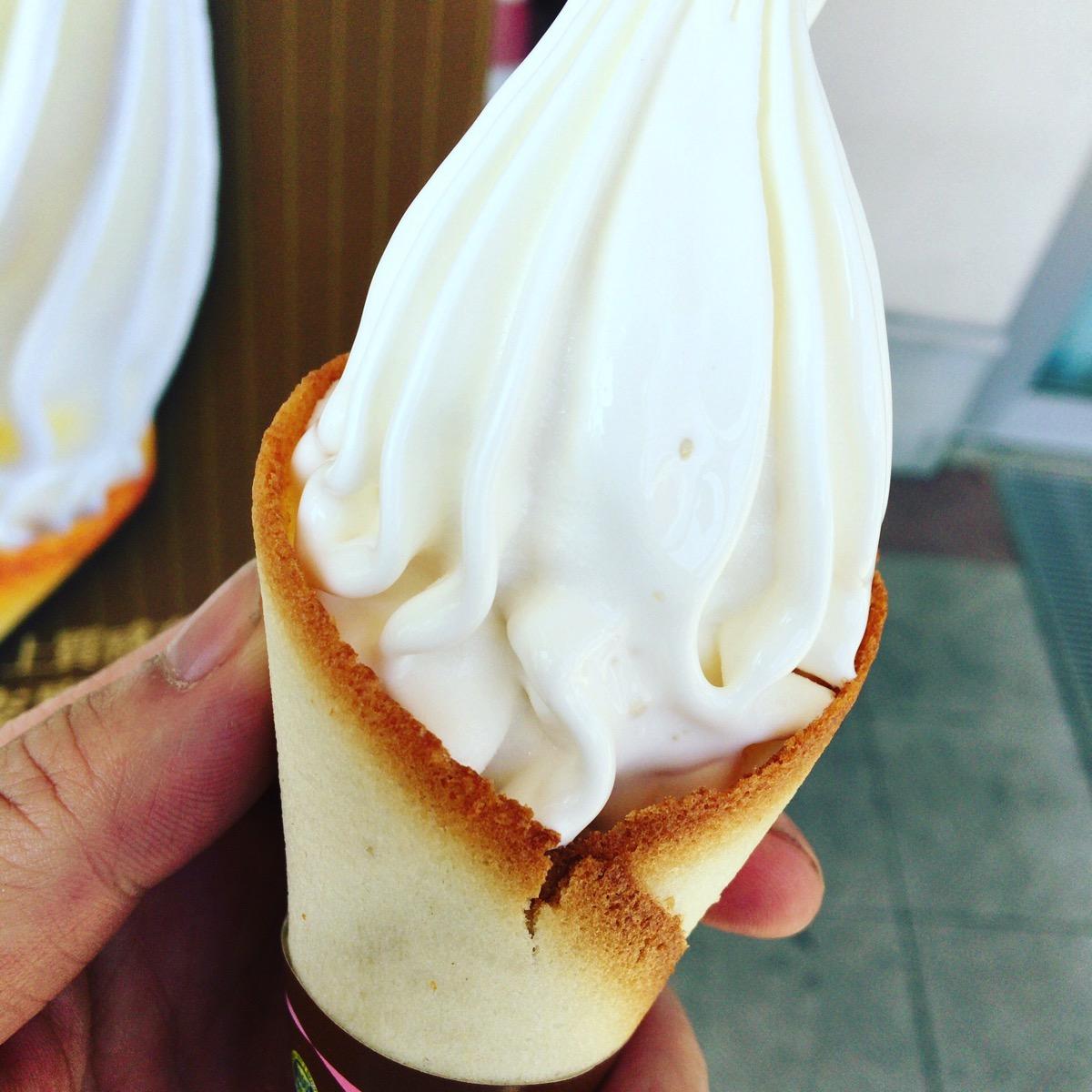 道の駅いぶすきで最近やたらと名前を聞く「クレミア」アイスを食ってきたんだ。