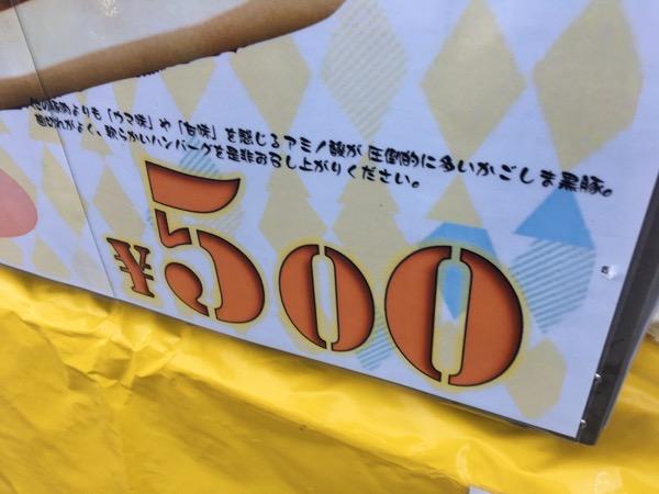 IMG 0693