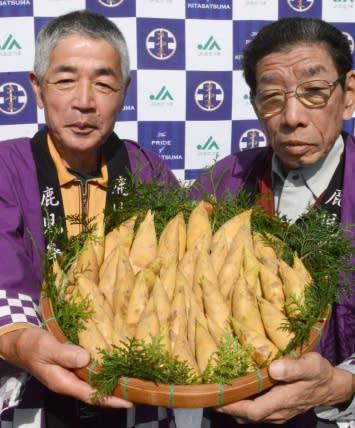「超早掘り」タケノコ、豊洲市場へ出荷 さつま町・JA北さつま